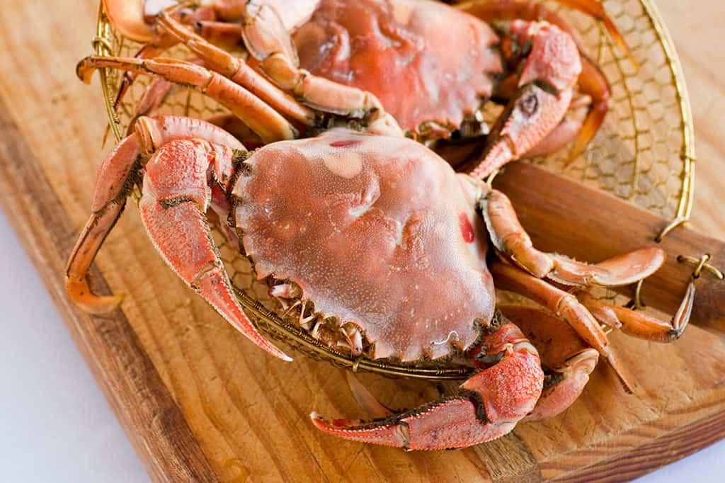 1024x682-Crabs-01