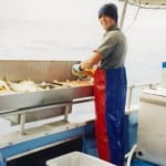 Sea Rover Fisheries